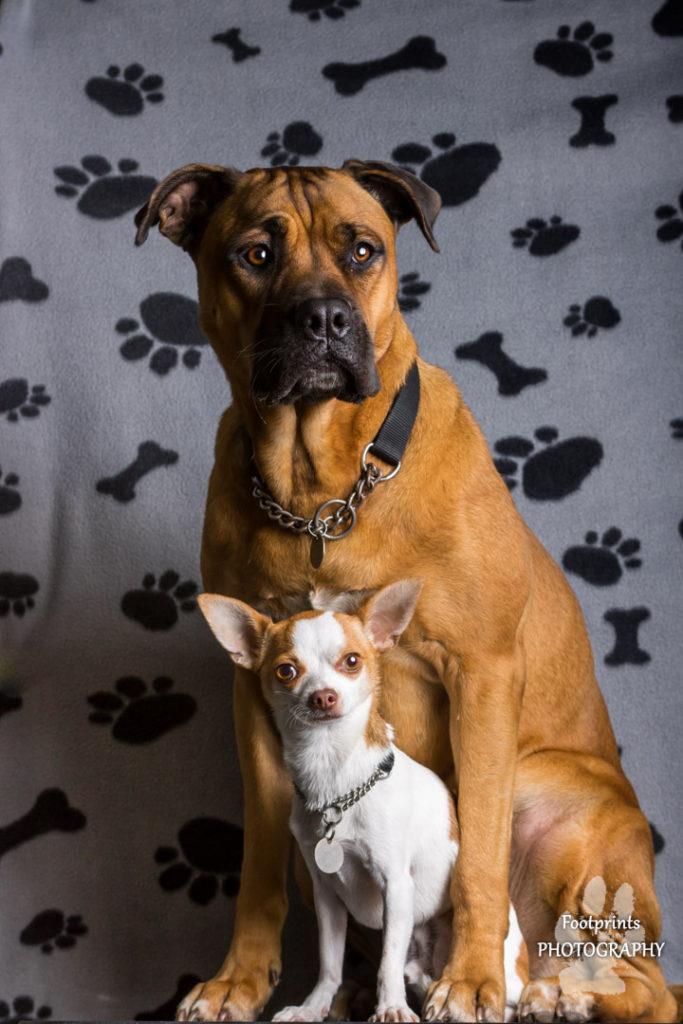 Zoe & Bruce